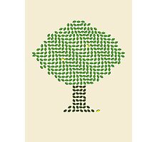 Lemon Tree with Moving Leaves Photographic Print