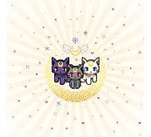 Sailor Cats - Pink Photographic Print