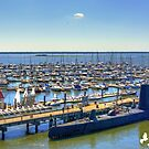 Boats by TJ Baccari Photography