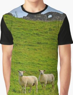 2 welsh Mountain Sheep at Dryslwyn Castle, Wales Graphic T-Shirt