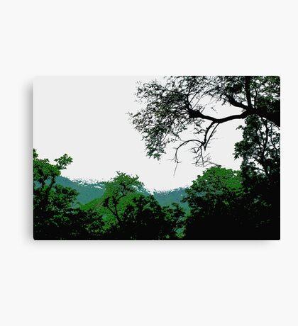 Nature evergreen Canvas Print
