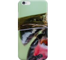 Bee 2 iPhone Case/Skin