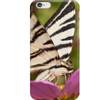 Iphiclides podalirius  iPhone Case/Skin
