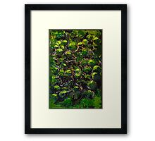 A view from above Framed Print