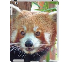 Red Panda Portrait iPad Case/Skin
