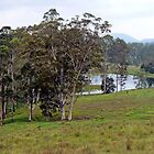 Peaceful Australian Countryside by Graeme  Hyde