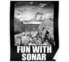 Fun with Sonar Poster
