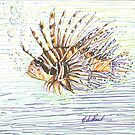 Lionfish by N. Sue M. Shoemaker