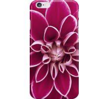 Beautiful purple dahlia flower iPhone Case/Skin