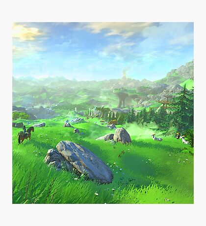 Breath Of The Wild - Field Photographic Print