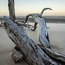 Reclining By The Sea by Fred McKie