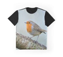 Robin, County Kilkenny, Ireland Graphic T-Shirt