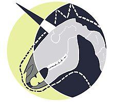 Unicorn and the Moon Photographic Print