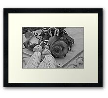 Beautiful Even If Devoid Of Color Framed Print