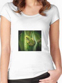 Pacific tree frog Women's Fitted Scoop T-Shirt