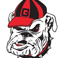 UGA Bulldog  by alysonpriest