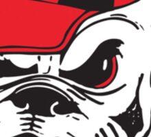 UGA Bulldog  Sticker