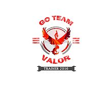 Go Team Valor Trainer by -DeadStar-