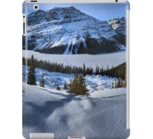 Peyto Lake Winter Panorama iPad Case/Skin