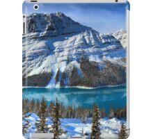 First Snow At Peyto Lake iPad Case/Skin