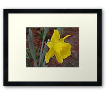 Sing Me a Song About Rain Framed Print