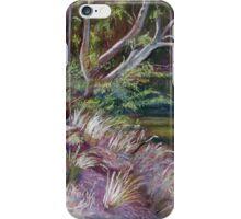 River Track iPhone Case/Skin