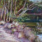 River Track by Lynda Robinson