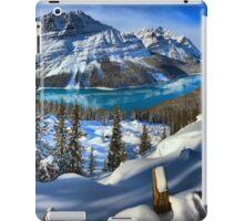 Bow Summit Spectacular iPad Case/Skin