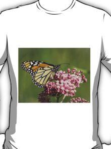 Monarch and Milkweed T-Shirt