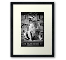 Her Highness Framed Print