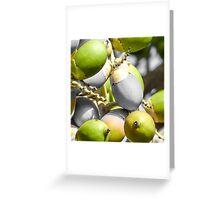 Manila Palm Green Greeting Card