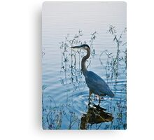 Egret by the Lake Canvas Print