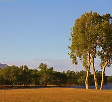 Townsville Landscape by Syllyred