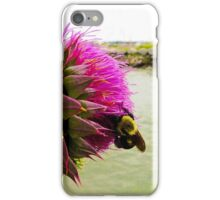 Prickly Situation iPhone Case/Skin