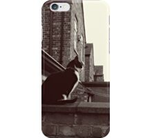 Corrie Cat! iPhone Case/Skin