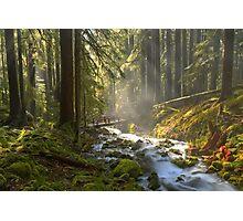 Mist Over The Bridge Photographic Print
