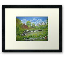 Forest River Landscape Framed Print