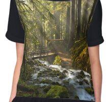 Winding Through The Sol Duc Rainforest Chiffon Top