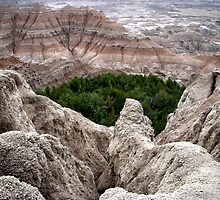 Badlands National Park, South Dakota (5) by Margaret  Hyde