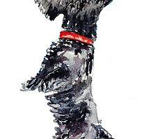 Scottie Dog 'Begging' by archyscottie