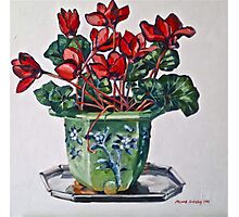 Cyclamen and old jardiniere 2012Ⓒ Oil on canvas Photographic Print