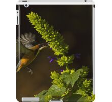 flying eastern spinebill iPad Case/Skin