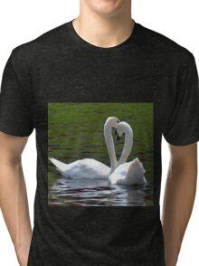 Swans Tri-blend T-Shirt