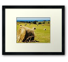 Making Hay while the Sun shines Framed Print