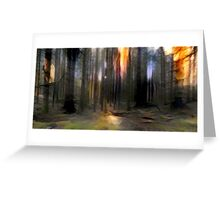 Into The Pine Forest Greeting Card