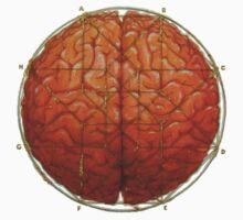 Cerebral Hyperstereogram T-Shirt