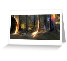 The Forest Light Greeting Card