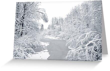 Magic white world by steppeland