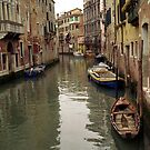 Venice Scene by Larry3