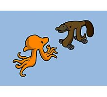 Octopi VS Platypi Photographic Print